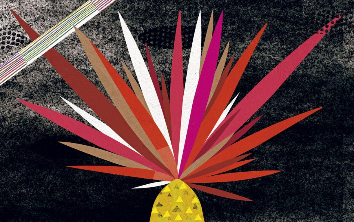 Ilustração 'Bicho não' faz parte da série de cinco livros escritos por Alessandra Pontes Roscoe