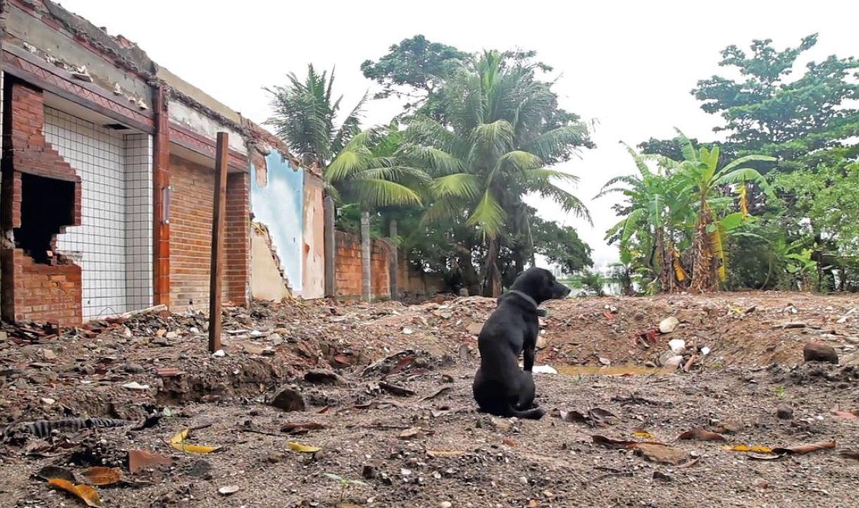 Em 'Se essa vila não fosse minha', Felipe Sena registra remoção dos moradores da Vila Autódromo