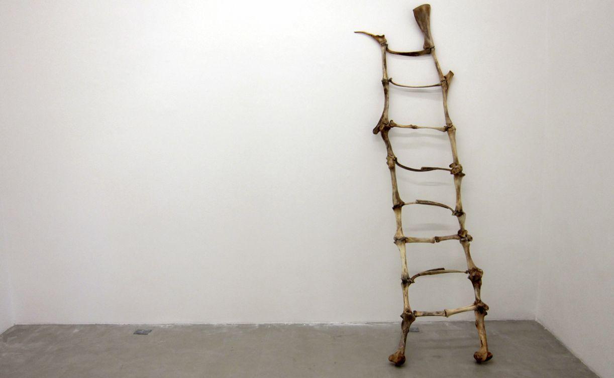 Na obra 'Sobre humano', que integra uma série feita a partir da imagem do animal, o artista utiliza ossos de boi