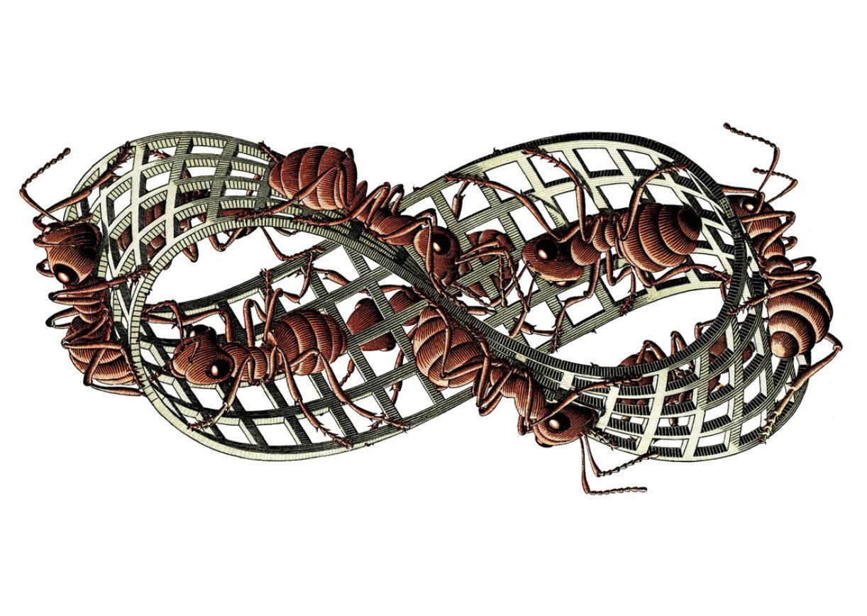 A figura topográfica da Fita de Moebius serve tanto à arte contemporânea quanto ao ensino