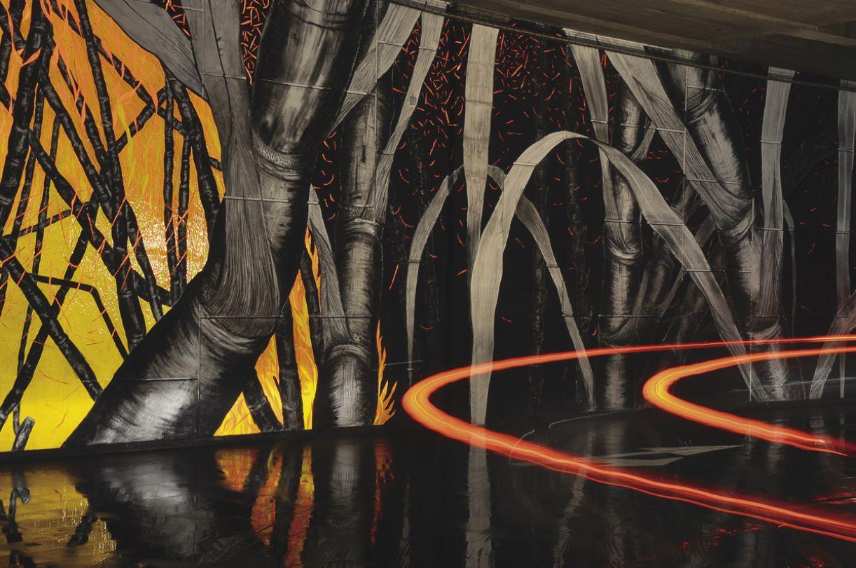 em 'O brilhante futuro da cana-de-açúcar' (2010), o artista utiliza a combustão da planta como metáfora da explosão econômica brasileira