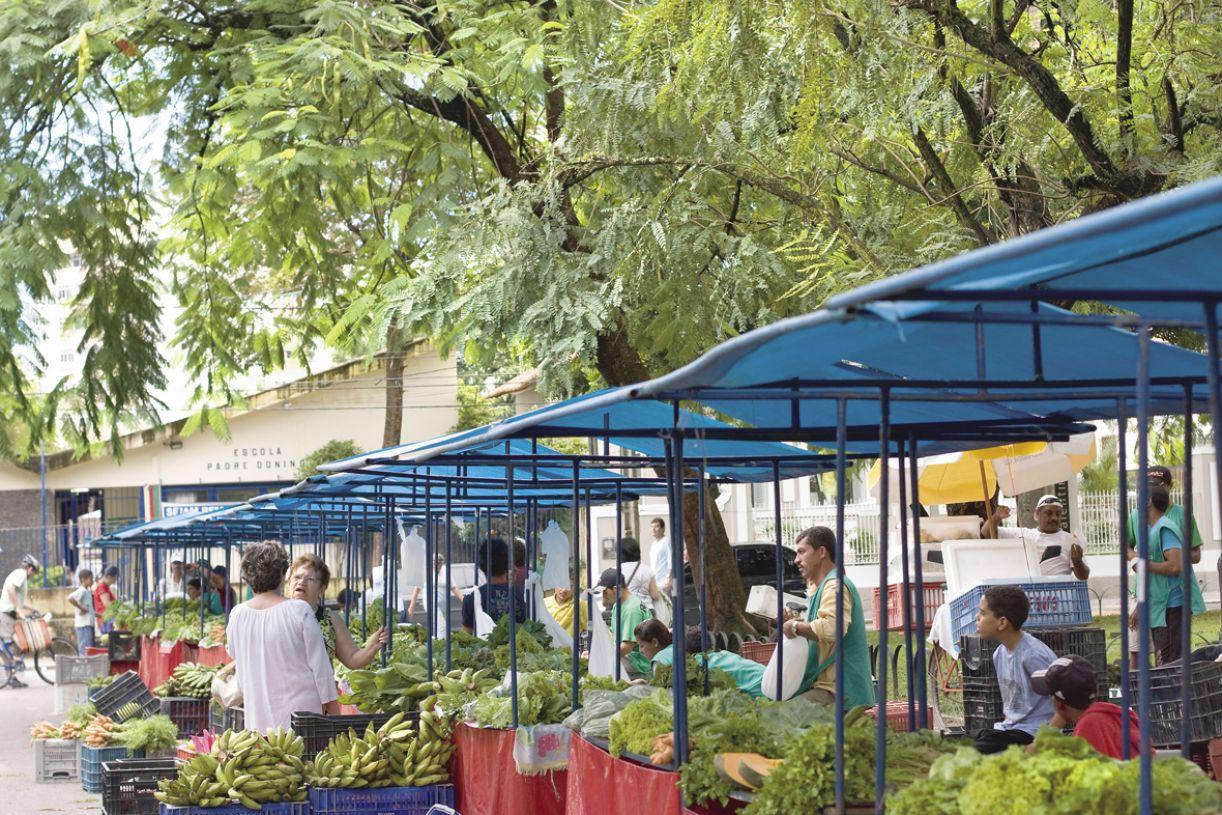 A feira de Casa Forte acontece há sete anos, abrigando 44 famílias de Goiana, Rio Formoso, Vitória de Santo Antão, Pombos e Chã Grande