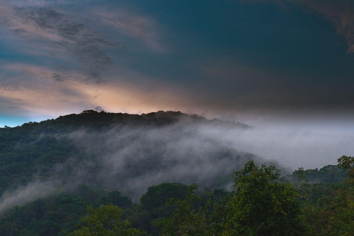 Vista do ponto mais alto do Inhotim, em Brumadinho, Minas Gerais