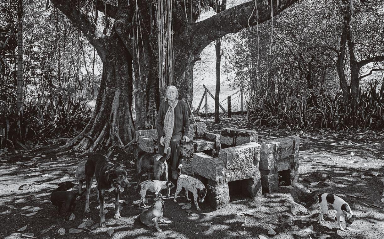 No jardim da Casa do Sol, a escritora rodeada de alguns dos seus muitos cachorros