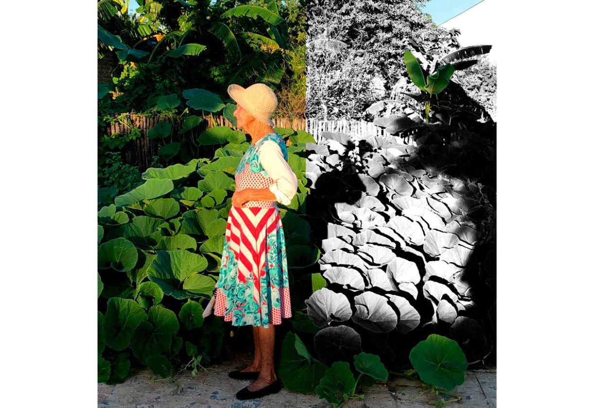 A poeta Severina Branca