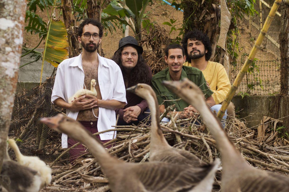 Os integrantes da banda: Dom de Oliveira (baixo e voz), Gabriel Sielawa (violão nylon, teclado, guitarra e voz principal), Passarinho (bateria, programação e voz) e Rafael Pessoto (guitarra e voz)