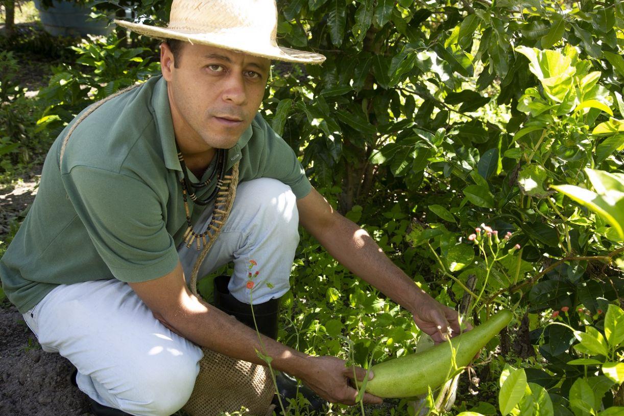 Iran Xukuru cuidando de seu terreiro de agricultura ancestral