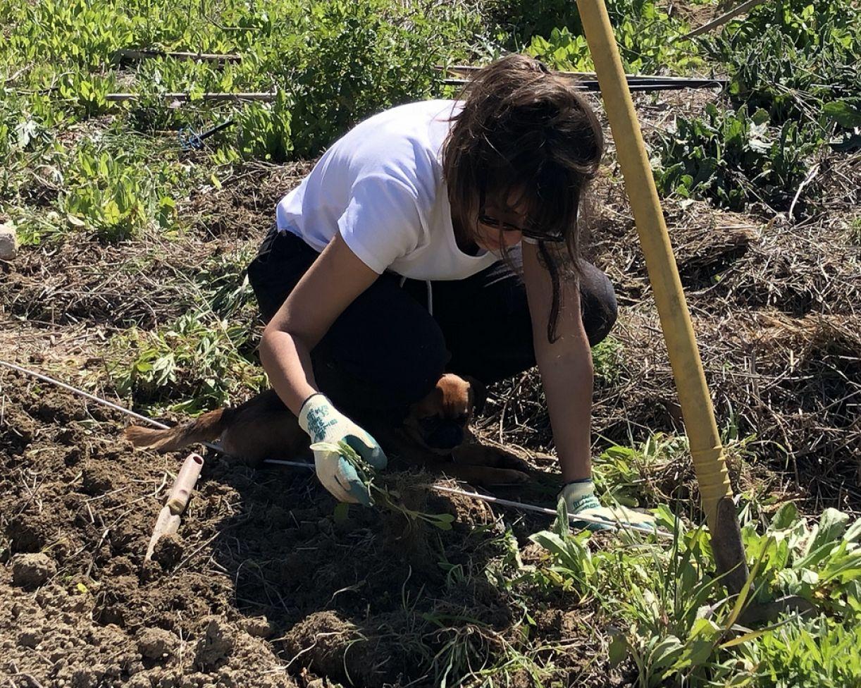 Bárbara Buril na fazenda Frutti D'Oro, na Itália