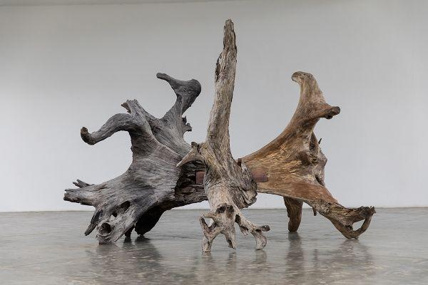 Exposição 'Raiz', de Ai Weiwei. Foto: Carol Quintanilha/Divulgação