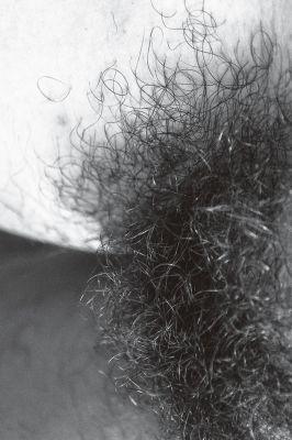 'Sorterro', série fotográfica, 2013