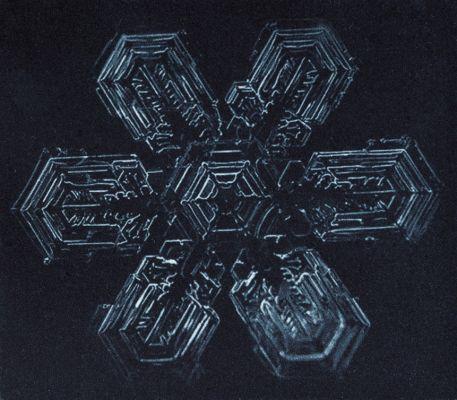 Formas primordiais de uma arquitetura microscópica estão em obras como 'Estrela de gelo' (para Alexey Kljatov) (2014). Fotogravura sobre papel hahnemühle, com 9 x 10 cm (aprox.). Por Flora Assumpção