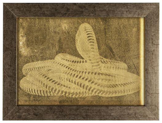 'Spectro III' ('Serpentes igneas') (2013). Fotogravura em folha de ouro e latão, 15 x 20 cm (aprox.). Por Flora Assumpção