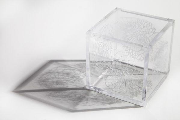 'Simbiose (versão II)' (2014), da série 'Animais simbióticos'. Cubo cristal desmontável em seis faces de acrílico recortado e gravado a laser, 7 x 7 x 7 cm. Por Flora Assumpção