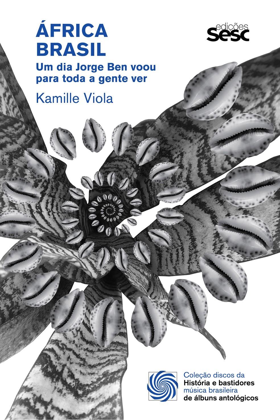 capa do livro áfrica brasil